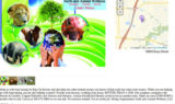 Earth And Wellness