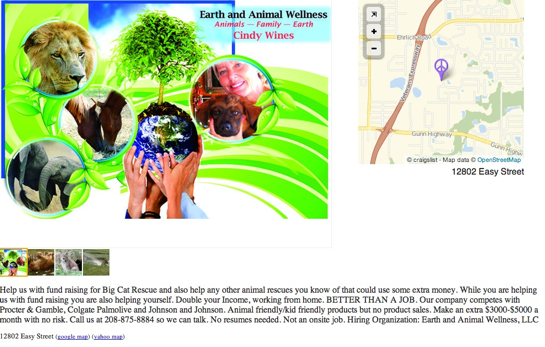 Earth And Wellness