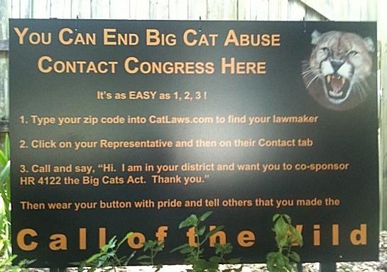 Sign Re Big Cat Ban