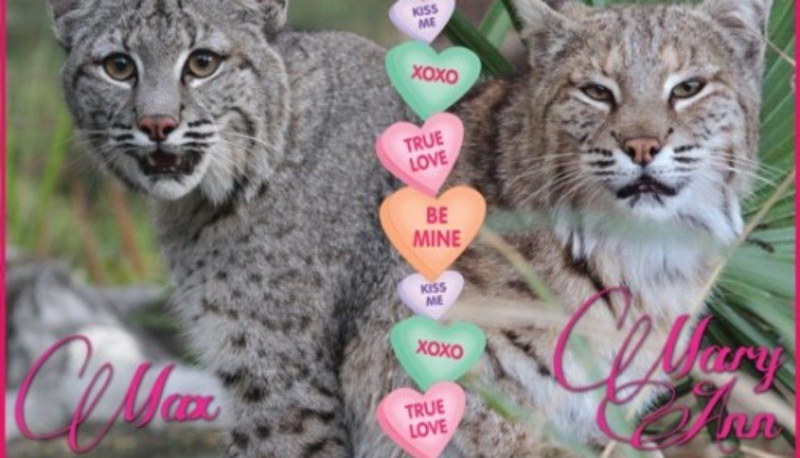 ValentinesMax&MaryAnn2