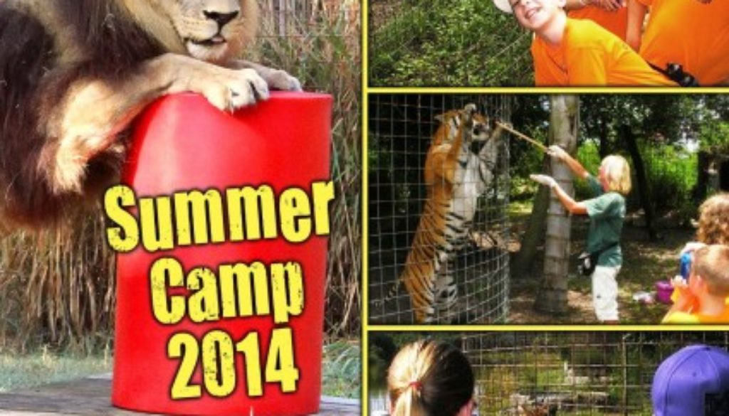 Summer Camp Big Cat Rescue