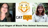 Cat Chat 52 Lori Gagen