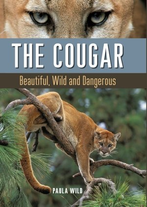 Cougar by Paula Wild Cover