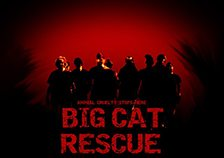 Rescuers-S3-224x158
