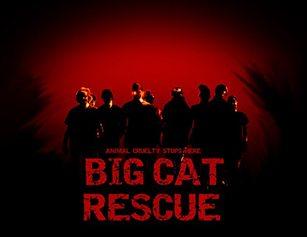Rescuers-S3-307x237