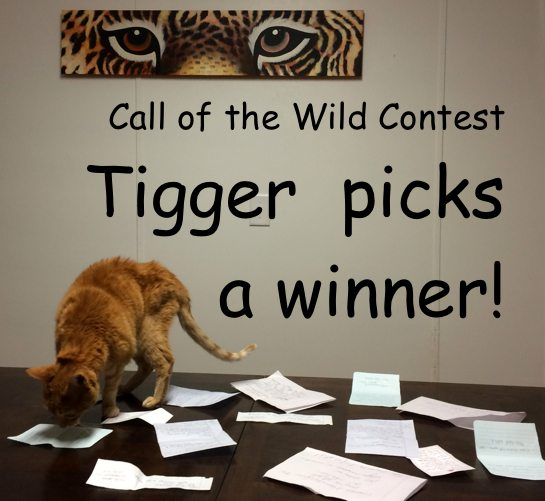 Tigger_Cat-Picks-iPad-Winner-TAFA_sm