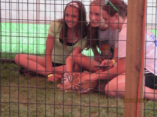 Mississippi Fair Tiger Cub Abuse