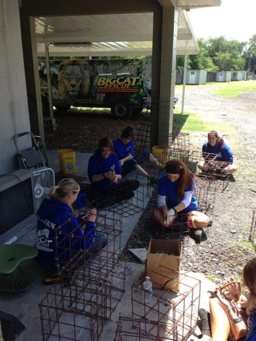 Volunteers-2014-04-16 13.31.20