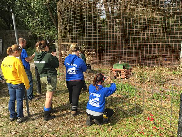 Volunteers-2014-12-11 13.24.49