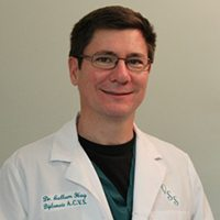 Dr. Callum Hay, BVMS, DACVS