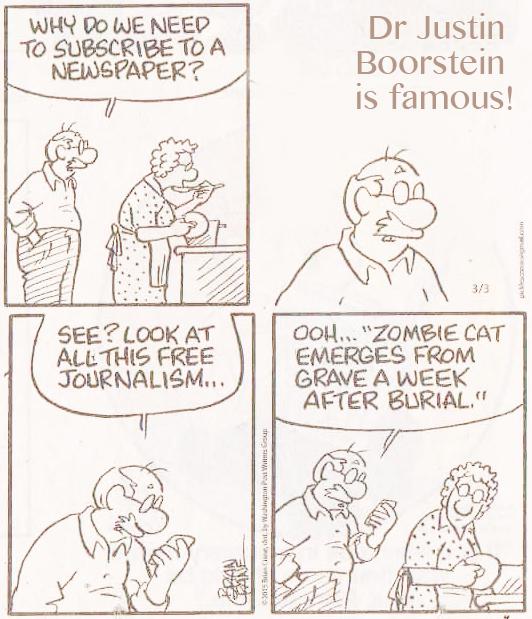 Dr Justin Boorstein Zombie Cat