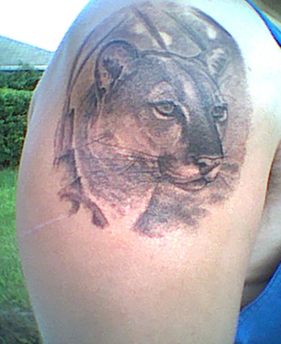 Tattoo-Glory-Cougar-Matt