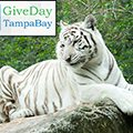 Give Day Tampa Bay Animals