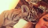 Khloe Kardashian Tiger Cub Abuse
