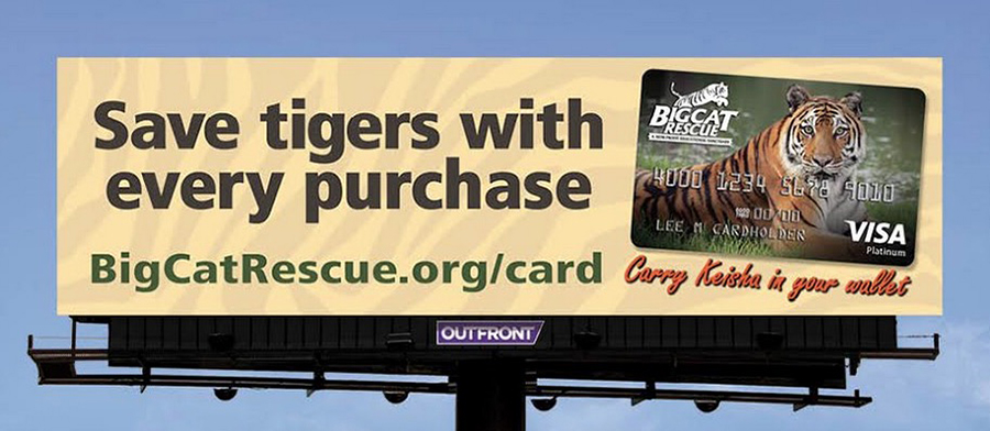 Big Cat Billboard Credit Card
