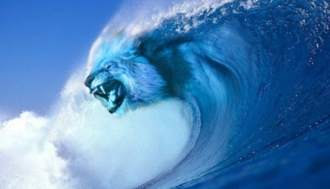 lion_wave_by_jesperharming