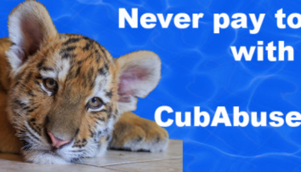 Never pay to play with cubs
