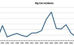 Big Cat Attacks Chart 2015