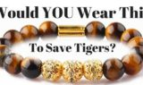 Tigers Eye Bracelet to Save Tigers