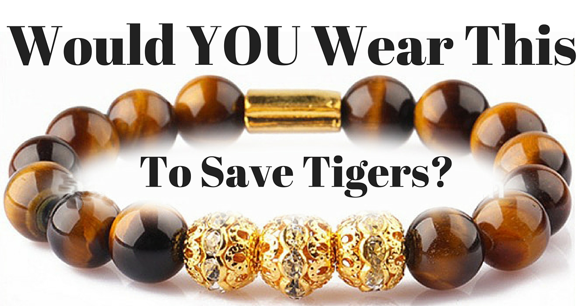 Tigers Eye Bracelet to Save Tigers