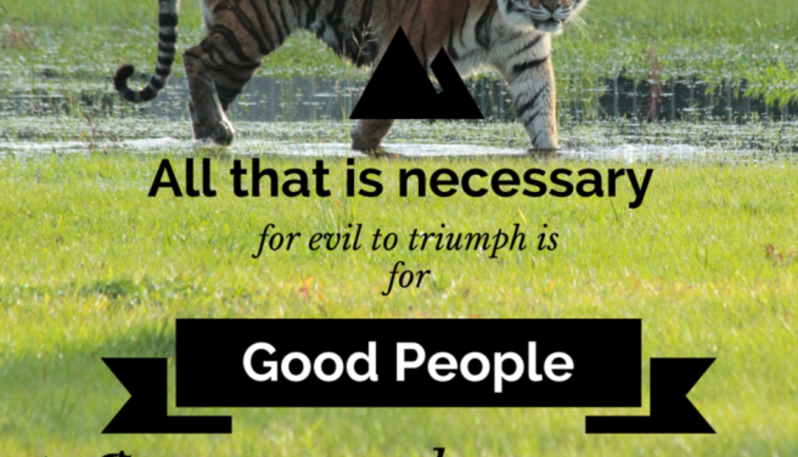 Evil to Triumph
