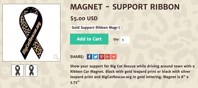 magnet support ribbon