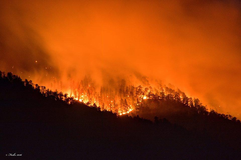 crow peak fire 2016 nabisco bobcat saved