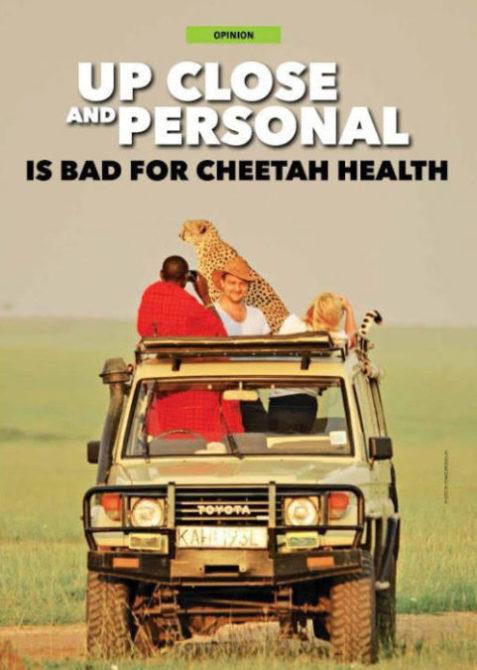 mara cheetah 1 no touch