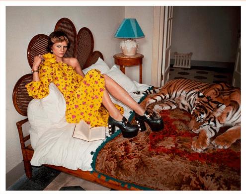 Ugly Gucci Tiger Ad