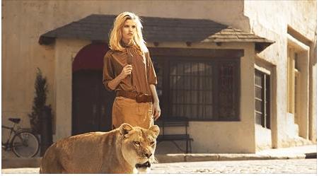 Magnum Lion Ad
