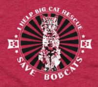 Some of you asked about the shirt Jamie was wearing during Sassy Cougar's vet visit. Here it is with a closeup of the graphic, too. If you get it, PLEASE model it for us and send the photos to lawanna.mitchell@bigcatrescue.org We really enjoy seeing them the photos plus the photo help others see how the shirt look on real people. It is hard to see how long or short they are by just seeing a photo of the shirt without it being on a Big Cat Model.