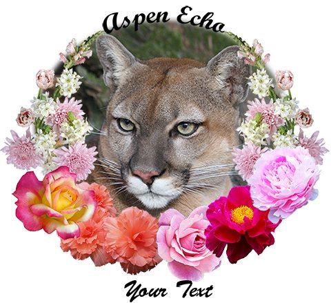 Aspen-Echo Puma Cougar
