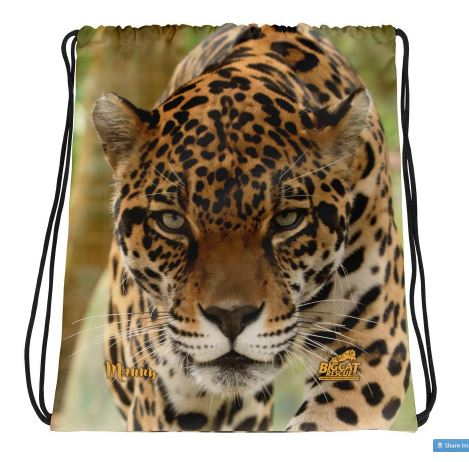 Show your love for Manny the jaguar with a cool drawstring bag. This lightweight bag can be worn as a backpack with drawstring closure at top, and narrow, contrasting shoulder straps. Manny's name and the BCR logo appear on the bottom of the bag. Image is printed on front and back.