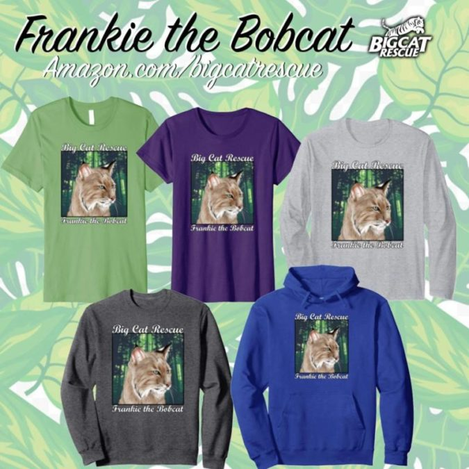 Frankie Bobcat now has his own line of merchandise