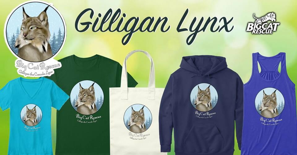 Gilligan Canadian Lynx - Big Cat Rescue Merchandise