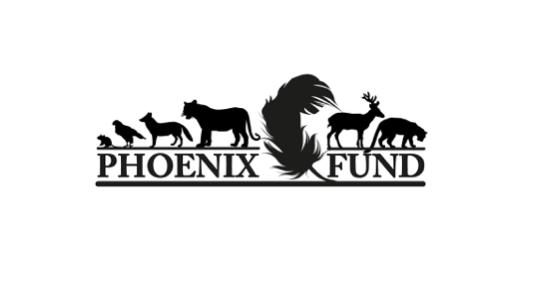 Phoenix-Fund-Amur-Leopard-Conservation-1
