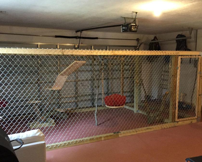 Illithia-Serval-Garage-Cage