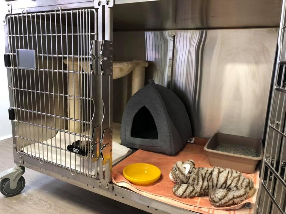 Bobcat Rehab Cage
