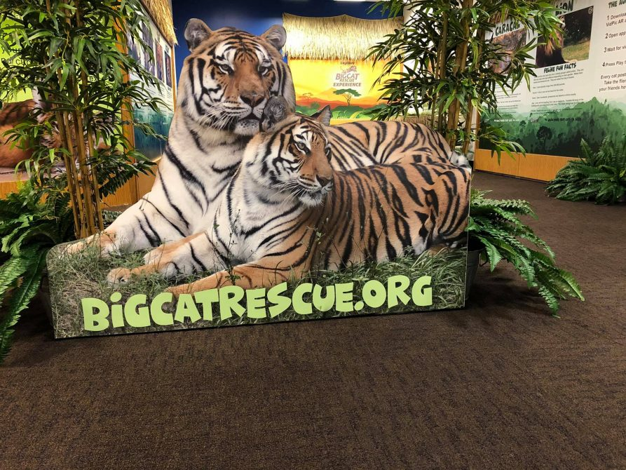 Augmented Reality Zoo in Plantation Florida
