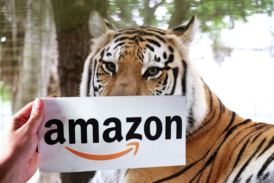 Make Dutchess SMILE!! Amazon Prime Day 2019 is fast approaching!! It starts July 15th at Midnight and runs through July 16th - Make sure you shop at Amazon.com/bigcatrescue to support the Big Cats!! Also, make sure you use Amazon Smile on the big day! You can donate to the cats at NO COST TO YOU when you select BCR as your charity on Amazon Smile and shop Smile.Amazon.com instead of Amazon.com. It is exactly the same as regular Amazon EXCEPT when you use the Smile URL Amazon donates .5% of your purchase to BCR. It's added up to over $100,000 for the cats! Unique charity link https://smile.amazon.com/ch/59-3330495