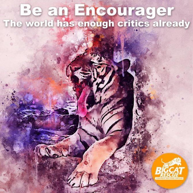 Memes & Quotes - Be an Encourager. The world has enough critics already