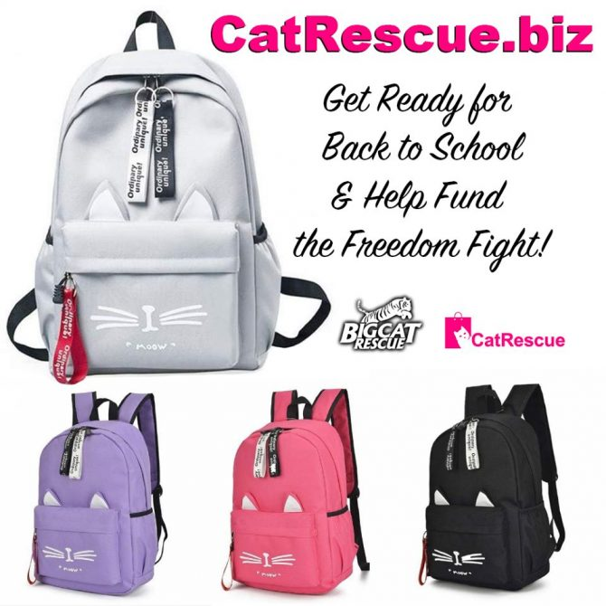 Get Ready for Back to School and Help Protect Big Cats at the same time! These adorable Cat Backpacks are available at CatRescue.biz! Order soon with an Estimated ship date August 4th! https://catrescue.myshopify.com/collections/frontpage/products/cute-cartoon-cat-ears-backpack