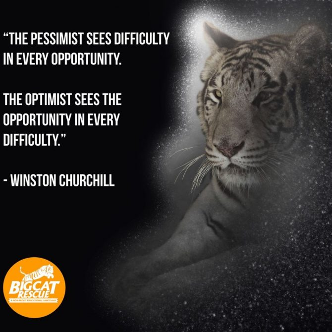 "Memes and Quote of the Day ""The pessimist sees difficulty in every opportunity. The optimist sees the opportunity in every difficulty"" ~Winston Churchill"
