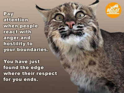 "Memes and Quote of the Day - ""Pay attention when people react with anger and hostility to your boundaries. You have just found the edge where their respect for you ends"""
