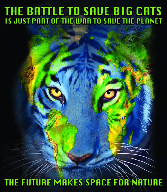 Planet B Tiger Earth Face