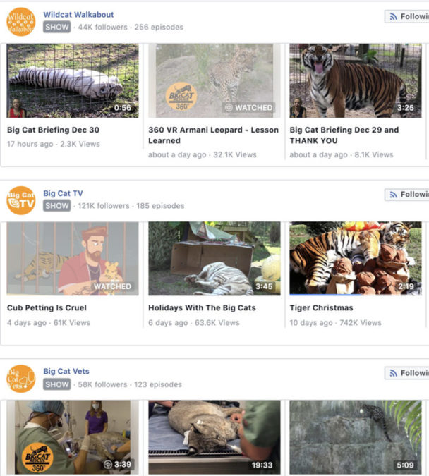 Facebook Watch Shows Big Cats