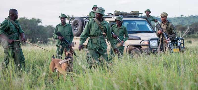 Singita Grumeti Fund Tanzania Rangers