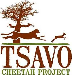 TSAVO CHEETAH PROJECT logo