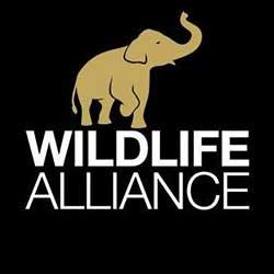 Wildlife Alliance logo