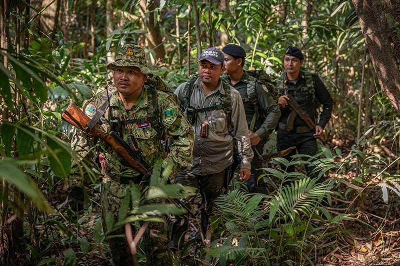 Wildlife Alliance Rangers Forest